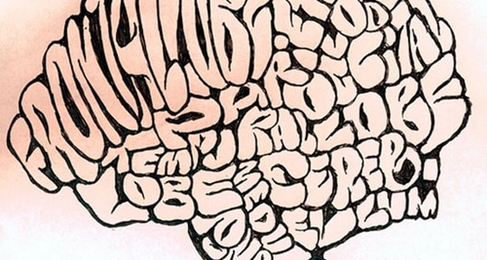 Understanding the Science of Distractions