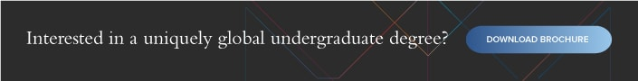 Hult global undergraduate degree