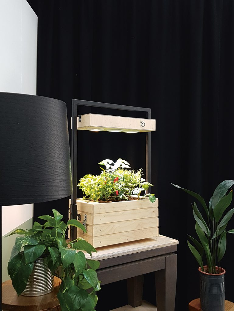 Sabrina Palme's original hydroponics project, Gartenzwerg