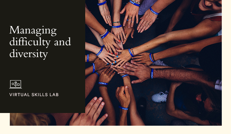 Hult Virtual Skills Lab: Managing difficulty and diversity