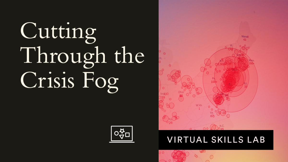 Virtual Skills Lab: Cutting Through the Crisis Fog