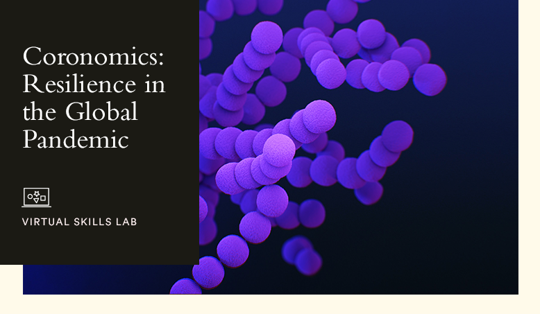 Hult Virtual Skills Lab: Coronomics: Resilience in the Global Pandemic Economy