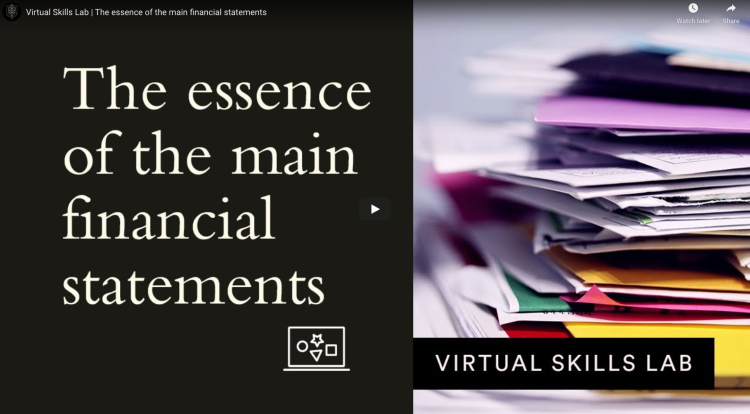 Virtual Skills Lab | The essence of the main financial statements